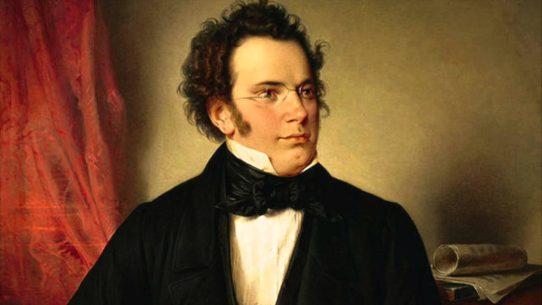 O óleo sobre tela colorido retrata, em primeiro plano, o compositor austríaco Franz Schubert. Ele tem pele clara, cabelos cheios e crespos castanhos, grandes costeletas, testa larga, nariz afilado e furo no queixo. Usa casaca preta sobre camisa de gola alta branca com gravata de laço preta. De óculos de aro metálico fino, ele está ligeiramente de perfil, olhando para direita. Ao fundo, à esquerda, uma cortina vermelha, e no canto direito, uma partitura enrolada sobre um móvel.